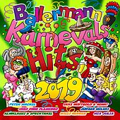 Ballermann Karnevals Hits 2019 von Various Artists
