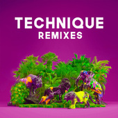 Technique (Remixes) by The Paces