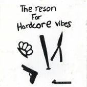 The Reson for Hardcore Vibes de Joe
