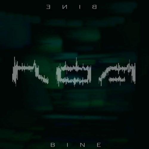 Bine by Roa