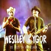 Os Reis Da Vaquejada de Weslley