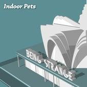 Being Strange de Indoor Pets