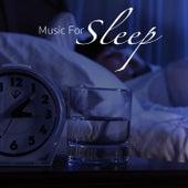 Music For Sleep de Various Artists