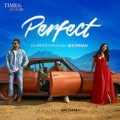 Perfect - Single de Gurinder Rai