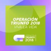 Viva La Vida (Operación Triunfo 2018) by Operación Triunfo 2018