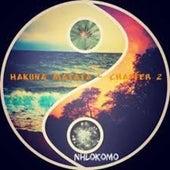 Hakuna Matata - Chapter 2 by Nhlokomo