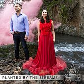 Planted by the Streams by The Nation