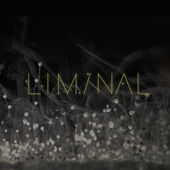 Liminal 2 by Various Artists