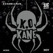 Woy by Kokane