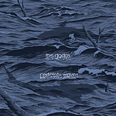 Certainty Waves by The Dodos