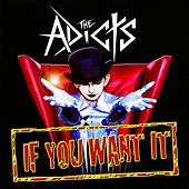 If You Want It by The Adicts