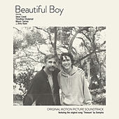 Beautiful Boy (Original Motion Picture Soundtrack) de Various Artists
