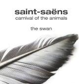 The Swan by Konstantin Scherbakov