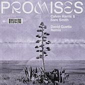 Promises (David Guetta Remix) de Calvin Harris