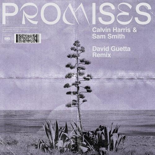 Promises (David Guetta Remix) by Calvin Harris