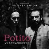 Potito, Mi Reencuentro, una producción de Vicente Amigo de El Potito