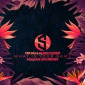 What Is Your Name (Volkan Uca Remix) de Mr. Nu