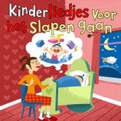 Kinderliedjes Voor Het Slapen Gaan by Various Artists