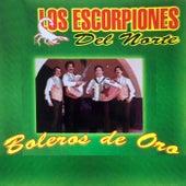 Boleros de Oro von Los Escorpiones Del Norte