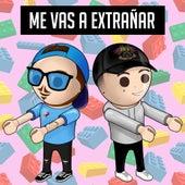 Me Vas a Extrañar by Fer Palacio