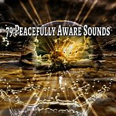 79 Peacefully Aware Sounds by Yoga Workout Music (1)