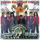 El Ritmo Salvajemente Tropical by Selva Negra