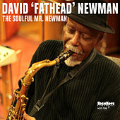 The Soulful Mr. Newman by David Newman