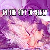 54 The Gift Of Sleep by Deep Sleep Music Academy