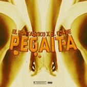 Pegaita by Fantastico
