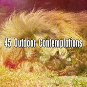 45 Outdoor Contemplations de Smart Baby Lullaby