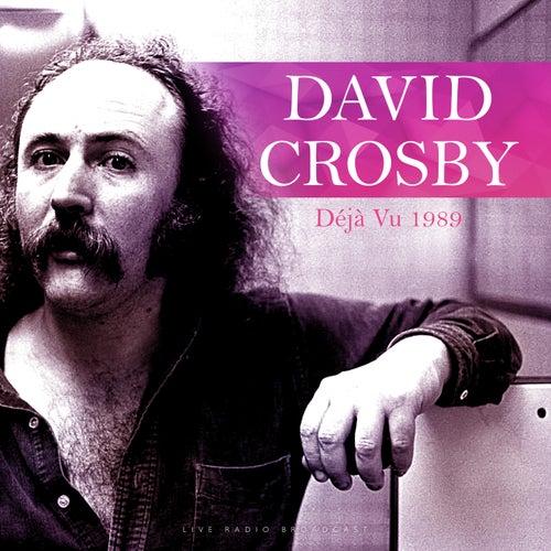 Déjà Vu (Quality Live Concert Performance) by David Crosby