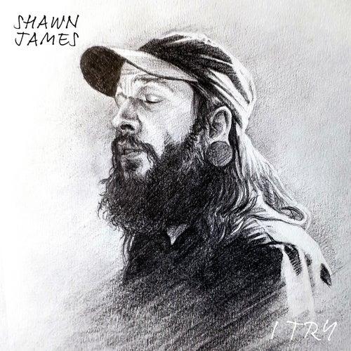 I Try de Shawn James