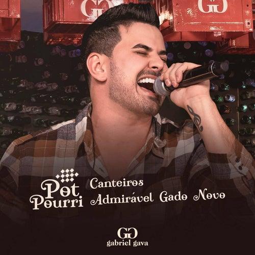 Canteiros / Admirável Gado Novo (Ao Vivo) de Gabriel Gava