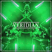 Follow by Veridian