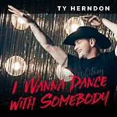 I Wanna Dance with Somebody by Ty Herndon