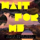 Wait For Me (feat. Christian Carcamo) by Steve Brian