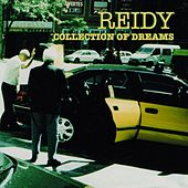 Collection of Dreams by Reidy