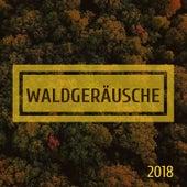 Waldgeräusche 2018 - Natur klingt nach Entspannung von Entspannungsmusik