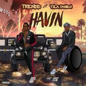 Havin by Trendd