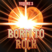 Born to Rock, Vol. 3 by Various Artists