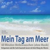 Mein Tag am Meer: 60 Minuten Wellenrauschen (ohne Musik) - Entspannen und die Seele baumeln lassen mit dem Klang des Meeres von Various Artists
