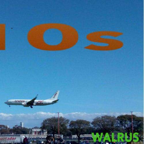 D10s de Walrus