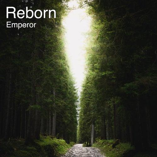 Reborn (Radio Edit) by Emperor