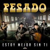 Estoy Mejor Sin Ti by Pesado