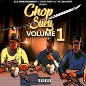 Chop Suey, Vol. 1 von Tiny Dc