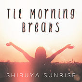 Til Morning Breaks de Shibuya Sunrise