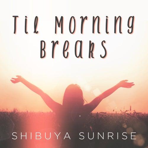 Til Morning Breaks by Shibuya Sunrise