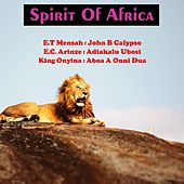 Spirit of Africa by Various Artists