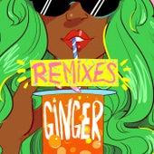 Ginger (Remix Bundle) de Riton & Kah-Lo