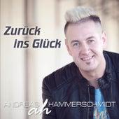 Zurück ins Glück by Various Artists
